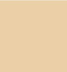 services-icon05